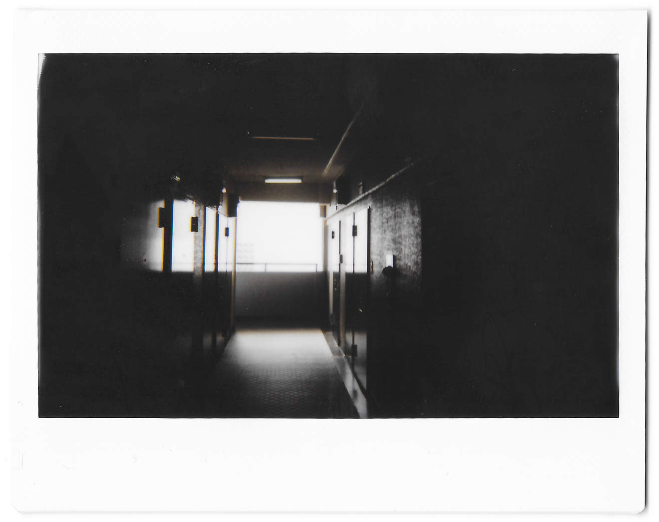 """Instant photo for Day 129 of """"A Year in an Instant"""" by Nuno Coelho Santos"""
