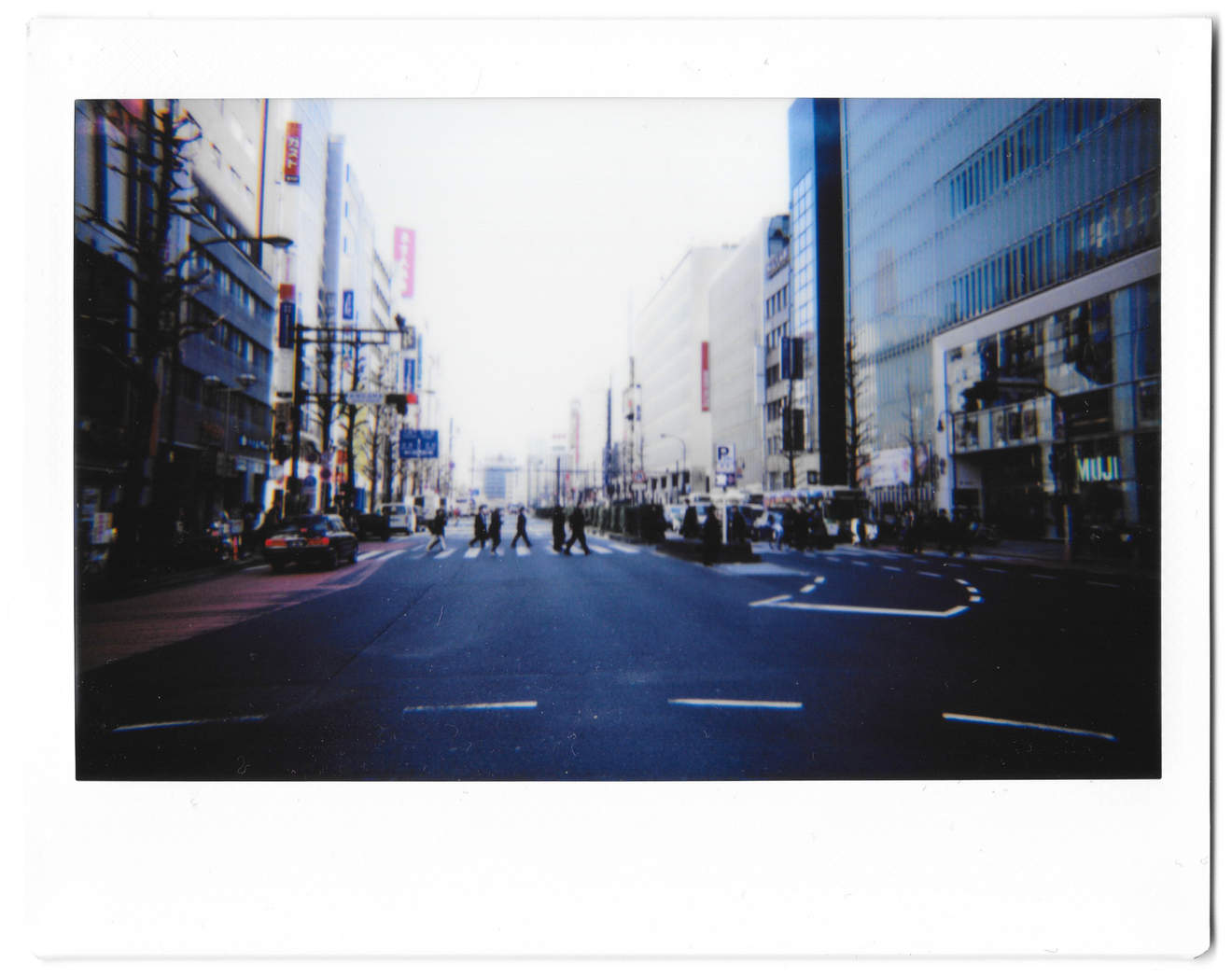 """Instant photo for Day 132 of """"A Year in an Instant"""" by Nuno Coelho Santos"""