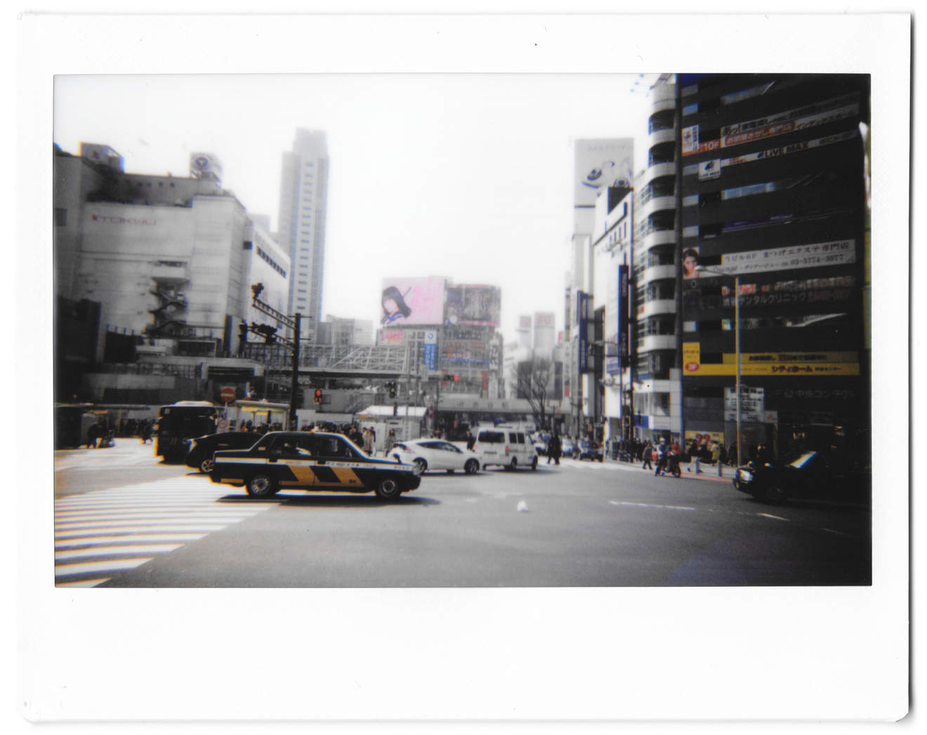 "Instant photo for Day 155 of ""A Year in an Instant"" by Nuno Coelho Santos"