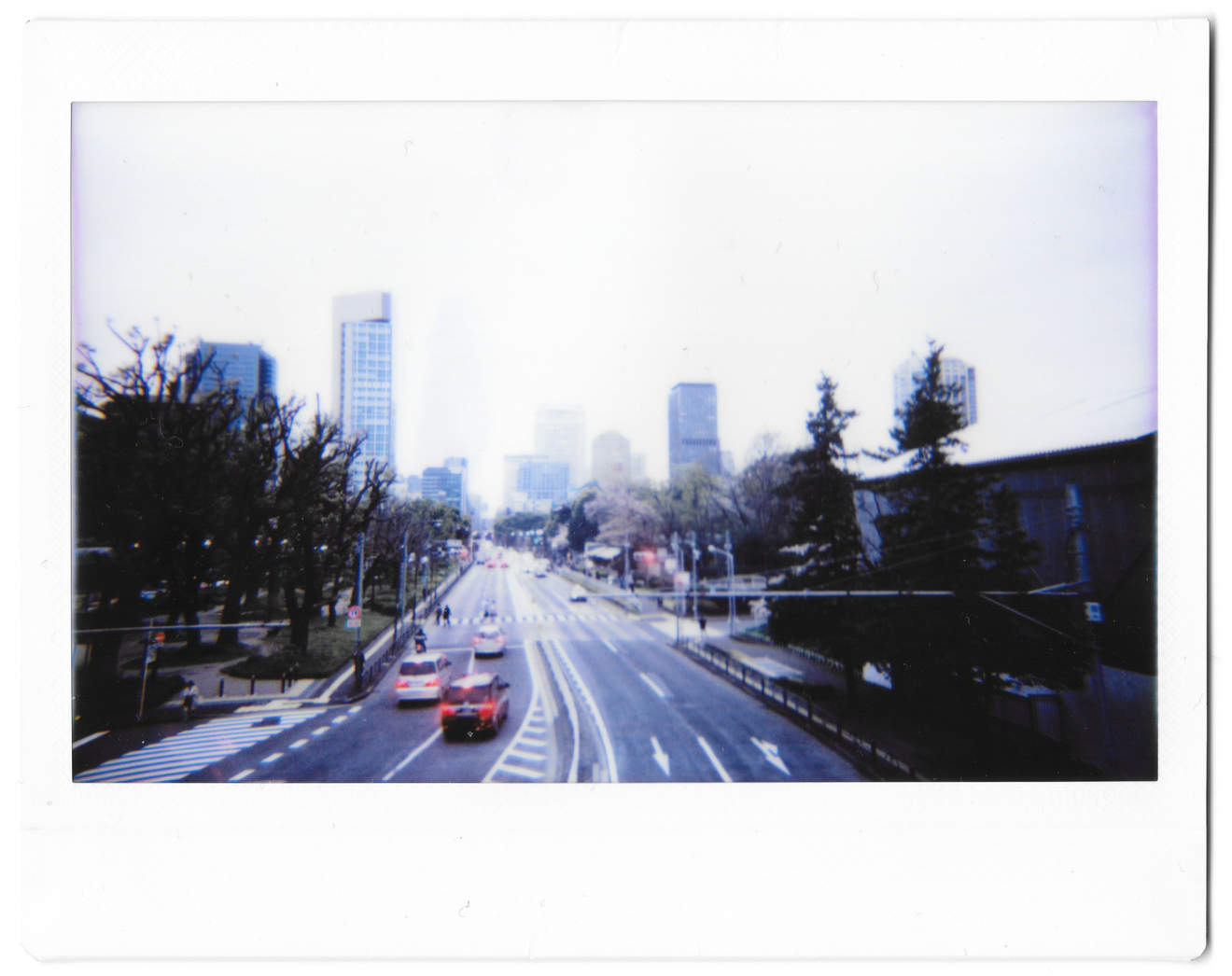 "Instant photo for Day 169 of ""A Year in an Instant"" by Nuno Coelho Santos"