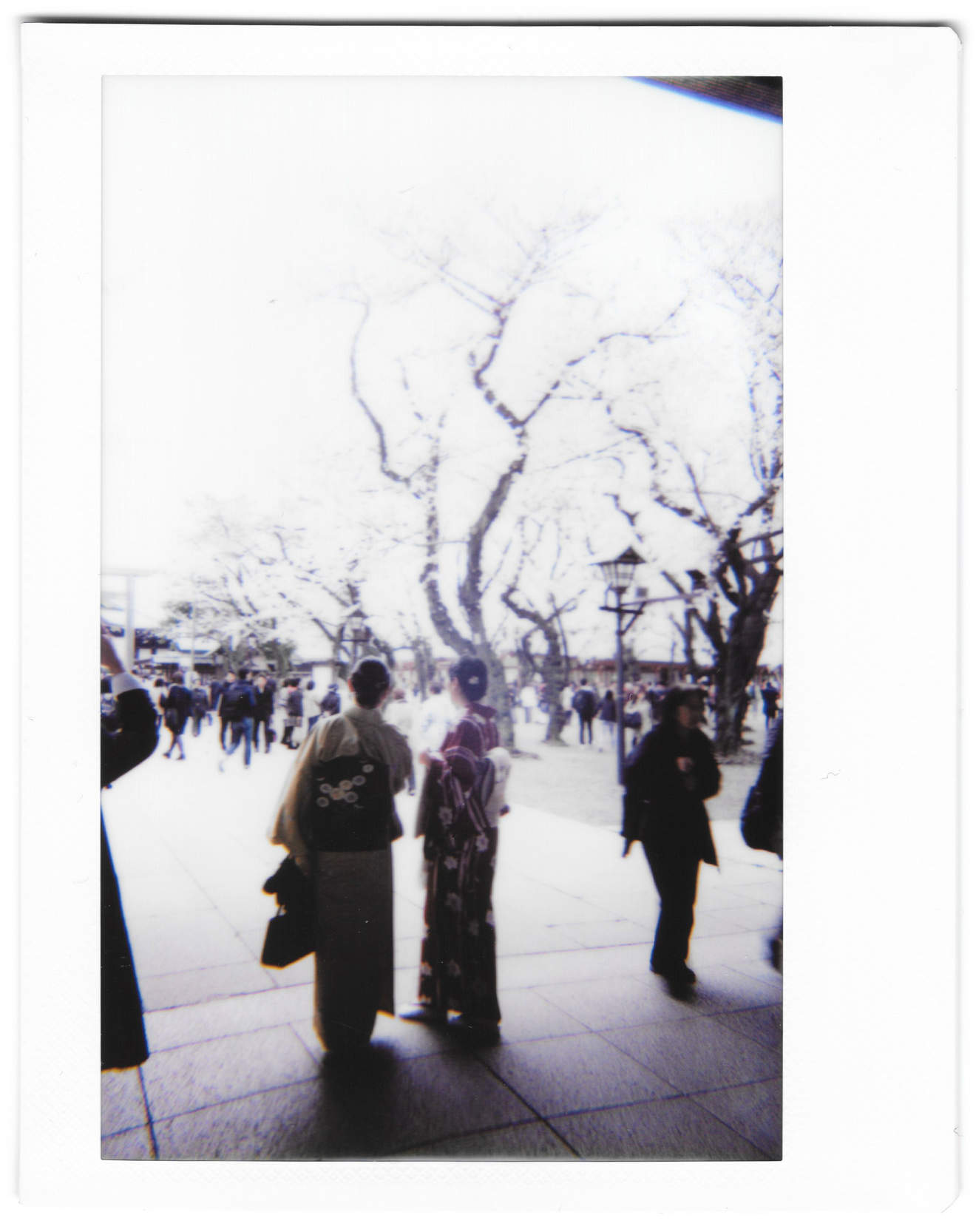 "Instant photo for Day 186 of ""A Year in an Instant"" by Nuno Coelho Santos"