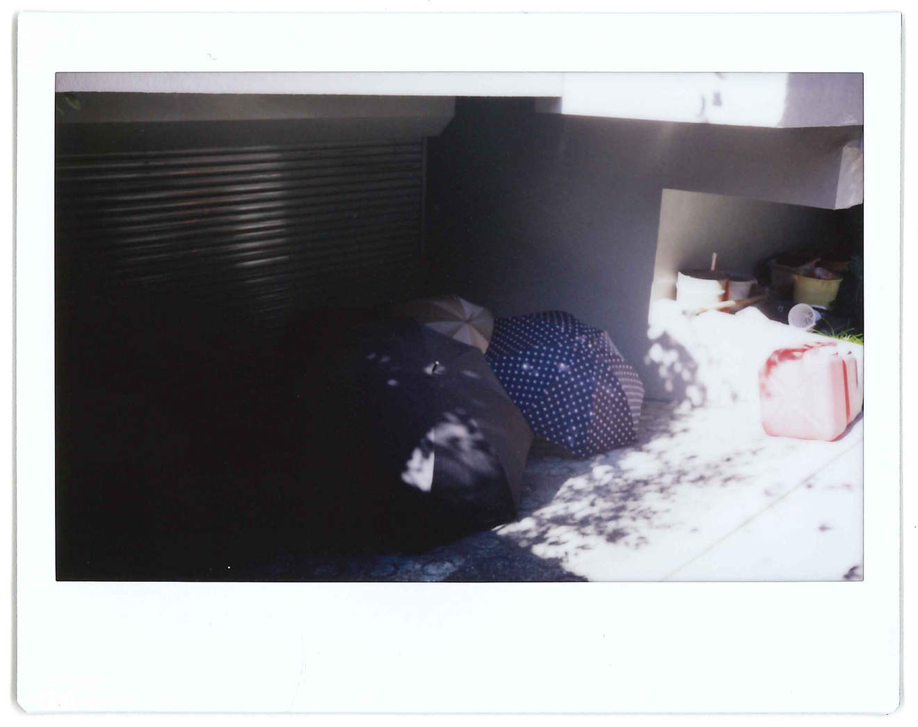 "Instant photo for Day 37 of ""A Year in an Instant"" by Nuno Coelho Santos"