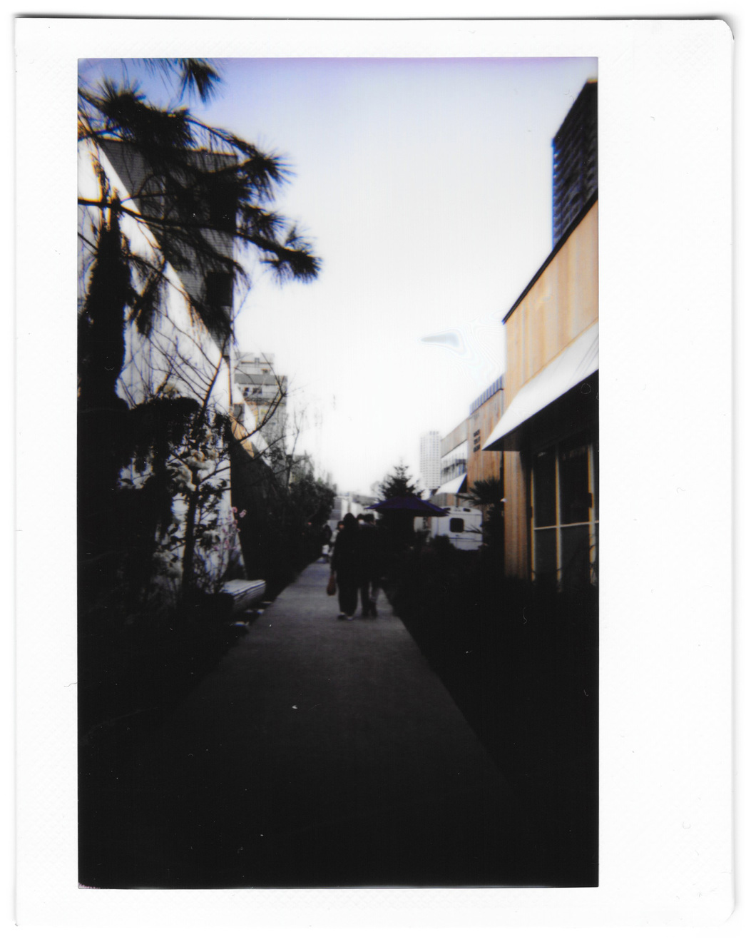 "Instant photo for Day 161 of ""A Year in an Instant"" by Nuno Coelho Santos"
